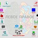 MetaprogBrain_1200